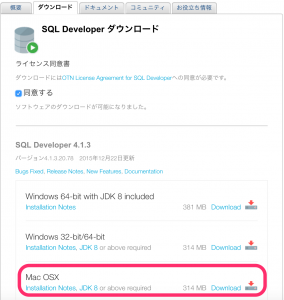 SQLDEVELOPer_01